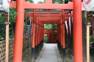 Chemin de torii dans le parc Ueno