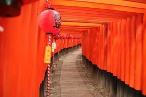 Chemin de torii